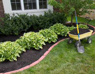 Landscaping supplies from Greener Horizon