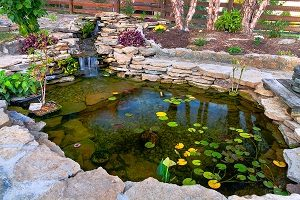 Decorative koi pond in a garden.